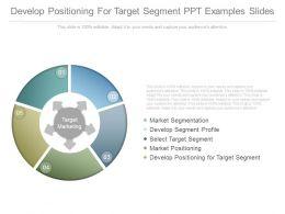 Develop Positioning For Target Segment Ppt Examples Slides