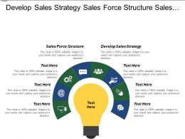 Develop Sales Strategy Sales Force Structure Sales Infrastructure