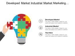 Developed Market Industrial Market Marketing Strategy Learning Growth