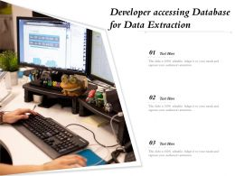 Developer Accessing Database For Data Extraction