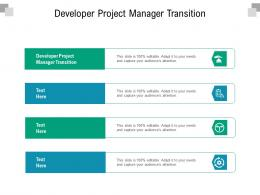 Developer Project Manager Transition Ppt Powerpoint Presentation Professional Graphics Download Cpb