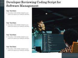 Developer Reviewing Coding Script For Software Management
