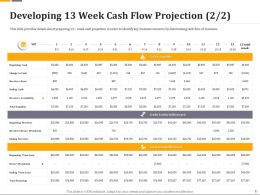 Developing 13 Week Cash Flow Projection Cash Ppt Icon Designs