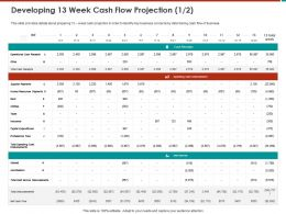 Developing 13 Week Cash Flow Projection M797 Ppt Powerpoint Presentation File Layout Ideas