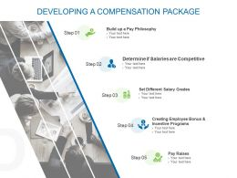 Developing A Compensation Package Ppt Powerpoint Presentation Show