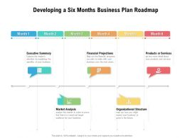 Developing A Six Months Business Plan Roadmap