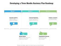 Developing A Three Months Business Plan Roadmap