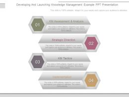Developing And Launching Knowledge Management Example Ppt Presentation