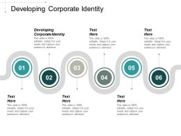 Developing Corporate Identity Ppt Powerpoint Presentation Portfolio Show Cpb