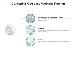 Developing Corporate Wellness Program Ppt Powerpoint Presentation Model Portrait Cpb