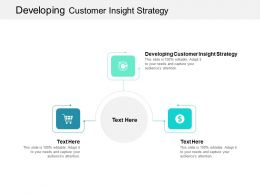 Developing Customer Insight Strategy Ppt Powerpoint Presentation Infographic Template Cpb