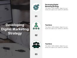 Developing Digital Marketing Strategy Ppt Powerpoint Presentation Clipart Cpb