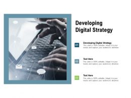 Developing Digital Strategy Ppt Powerpoint Presentation Styles Icon Cpb
