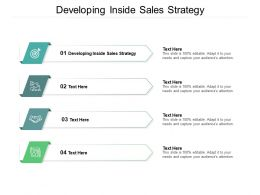 Developing Inside Sales Strategy Ppt Powerpoint Presentation Show Topics Cpb