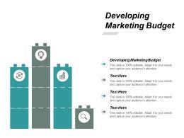 Developing Marketing Budget Ppt Powerpoint Presentation Portfolio Background Cpb