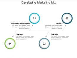 Developing Marketing Mix Ppt Powerpoint Presentation File Shapes Cpb