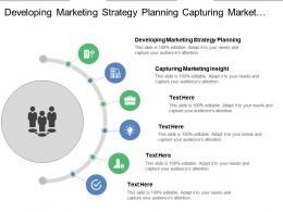 Developing Marketing Strategy Planning Capturing Marketing Insight Delivering Value