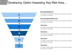 Developing Option Assessing Key Risk Area Identifying Issues