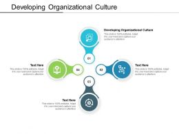 Developing Organizational Culture Ppt Powerpoint Presentation Icon Cpb