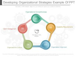 Developing Organizational Strategies Example Of Ppt