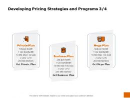 Developing Pricing Strategies And Programs Plan Ppt Powerpoint Inspiration