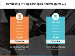Developing Pricing Strategies And Programs Ppt Powerpoint Presentation File Guidelines
