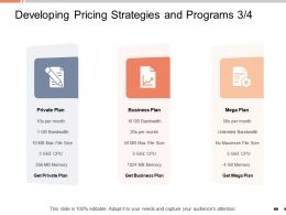 Developing Pricing Strategies And Programs Private Plan Ppt Powerpoint Presentation Files