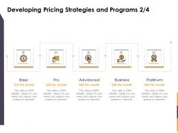 Developing Pricing Strategies And Programs Pro Ppt Powerpoint Model Grid