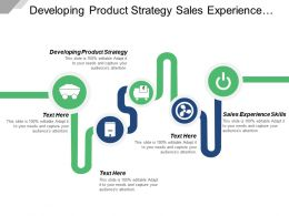 Developing Product Strategy Sales Experience Skills Organization System Cpb