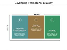 Developing Promotional Strategy Ppt Powerpoint Presentation Pictures Examples Cpb