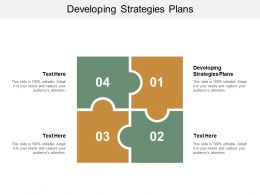 Developing Strategies Plans Ppt Powerpoint Presentation Icon Model Cpb