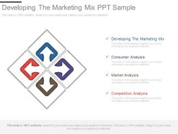 Developing The Marketing Mix Ppt Sample