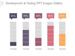 Development And Testing Ppt Images Gallery