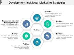 Development Individual Marketing Strategies Ppt Powerpoint Presentation Diagram Templates Cpb