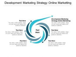 Development Marketing Strategy Online Marketing Ppt Powerpoint Presentation Pictures Styles Cpb