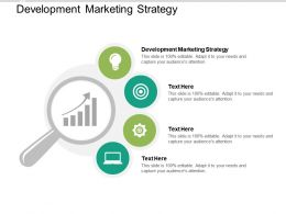 Development Marketing Strategy Ppt Powerpoint Presentation Infographic Template Introduction Cpb