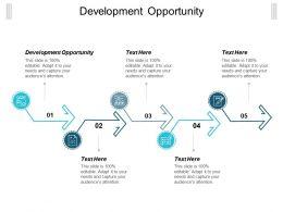 Development Opportunity Ppt Powerpoint Presentation Gallery Graphics Tutorials Cpb