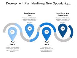 Development Plan Identifying New Opportunity Formulation Marketing Strategy