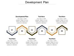 Development Plan Ppt Powerpoint Presentation File Structure Cpb