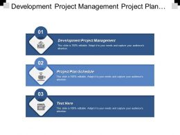 Development Project Management Project Plan Schedule Managing Sales Cpb