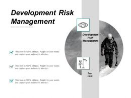 Development Risk Management Ppt Powerpoint Presentation Portfolio Background Designs Cpb