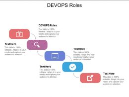 DEVOPS Roles Ppt Powerpoint Presentation File Tips Cpb