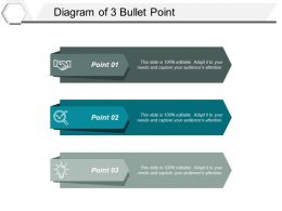 Diagram Of 3 Bullet Point