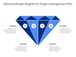 Diamond Shape Diagram For Project Management Plan Infographic Template