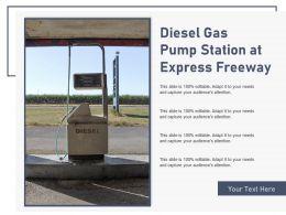 Diesel Gas Pump Station At Express Freeway