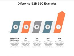 Difference B2B B2C Examples Ppt Powerpoint Presentation Ideas Model Cpb
