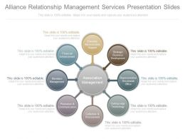 Different Alliance Relationship Management Services Presentation Slides