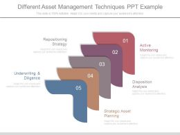 Different Asset Management Techniques Ppt Example