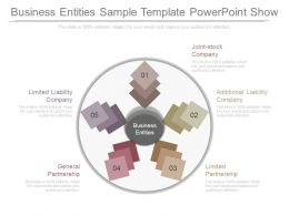 Different Business Entities Sample Template Powerpoint Show