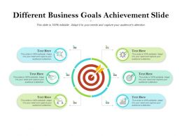 Different Business Goals Achievement Slide
